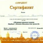 Сертификат Зыковой Л. Н. 2010