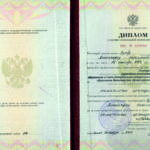 Диплом о переподготовке Зуева Александра