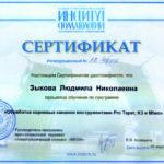Сертификат Зыковой Л. Н.