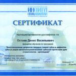 Сертификат Дениса Остаева 2017